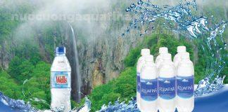 Nên chọn nước uống Aquafina hay Wells