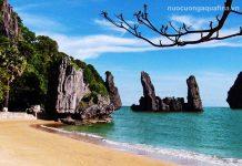 Top 5 đại lý giao nước Aquafina tại Kiên Giang